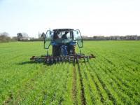 agriculture sénégalaise, économie, fao