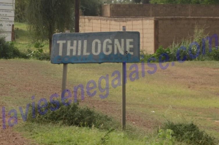 thilogne