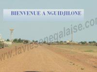 le-festival-culturel-de-nguidjilone-laviesenegalaise-culture