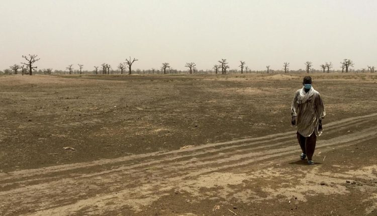 Terre de Ndingler, Foncier, Sedima, Babacar Ngom