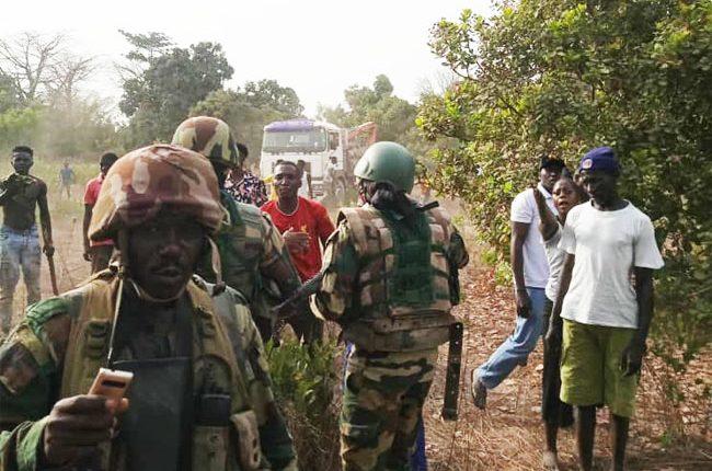 Trafic de bois en Casamance - l'Armée traque des délinquants jusqu'à la frontière avec la Gambie