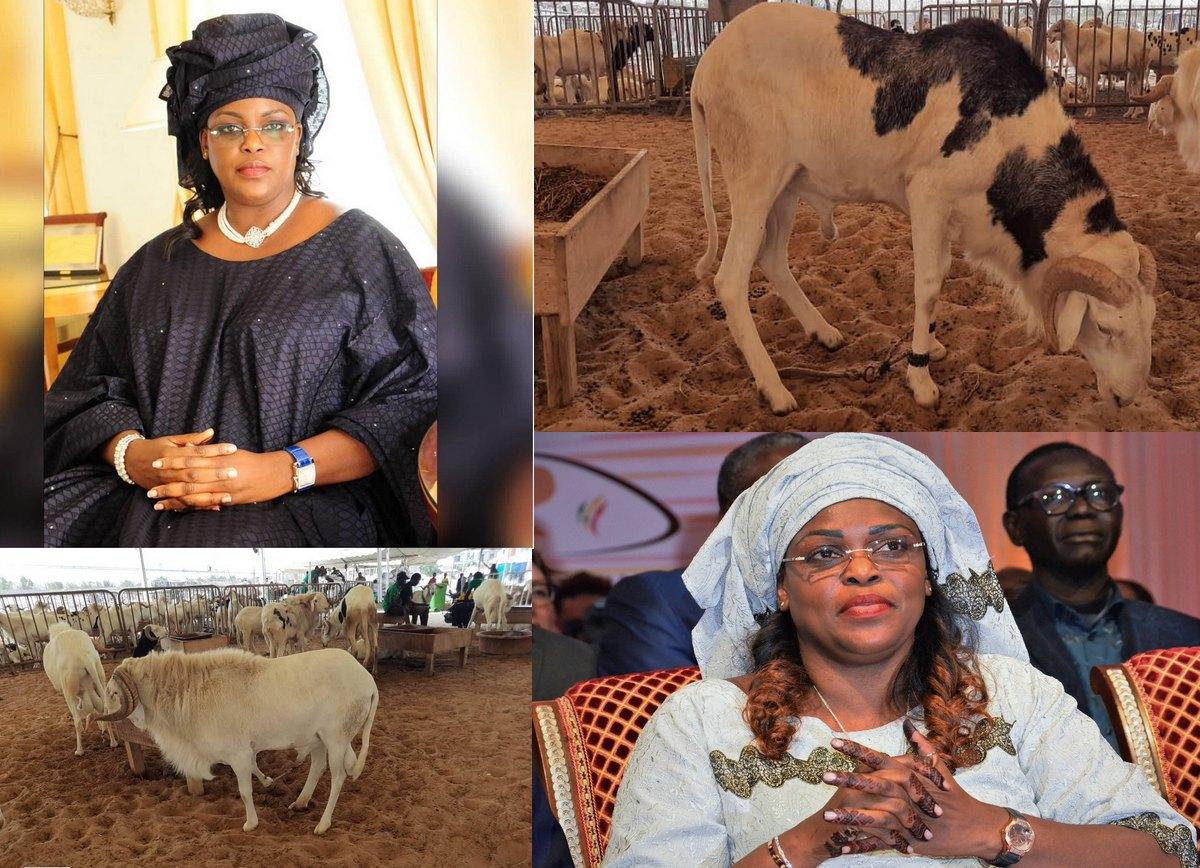 La Première Dame Marième Faye Sall Offre des moutons aux nécessiteux